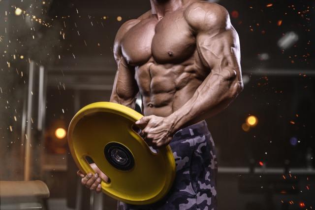 ネガティブトレーニングでの効果はポジティブ動作とネガティブ動作で得られる