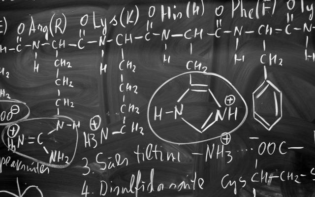 必須アミノ酸と非必須アミノ酸