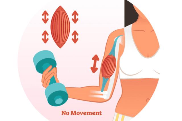 筋肉の成長が妨げられる