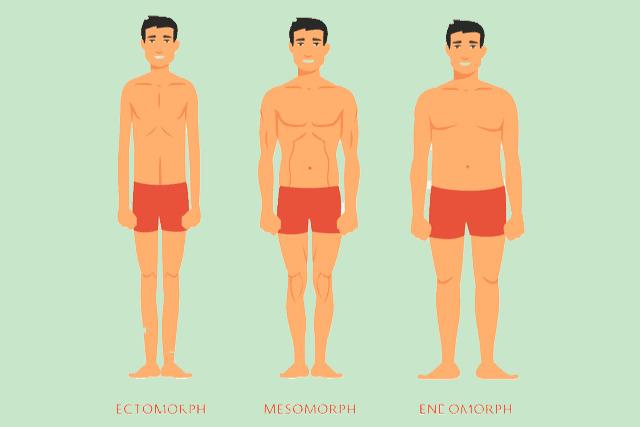 体の変化を可視化する
