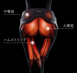 男性のお尻はこの筋肉を鍛えるべき