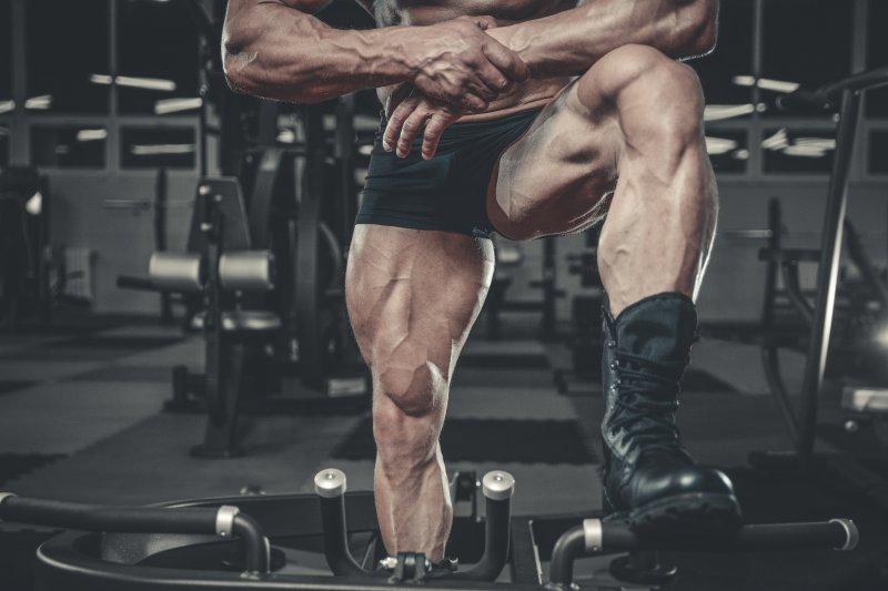 鍛えられる筋肉部位は4つ