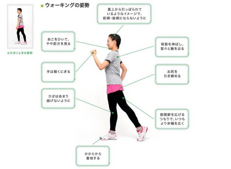 ウォーキングは散歩とは違う。正しいフォームを解説