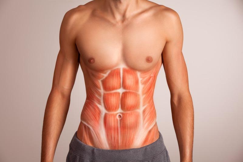 細マッチョになるために鍛えるべき腹筋部位